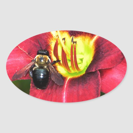 Bee and Flower Oval Sticker