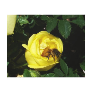 Bee and My Buds Canvas Print