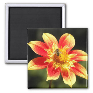 Bee and Orange Flower Floral 2 Inch Square Magnet