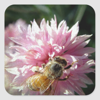 Bee and Pink Flower Square Sticker