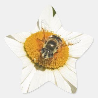 Bee and White Flower Star Sticker