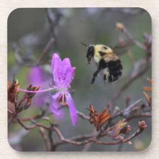 Bee and Wildflower Drink Coasters
