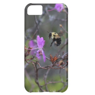 Bee and Wildflower Cover For iPhone 5C