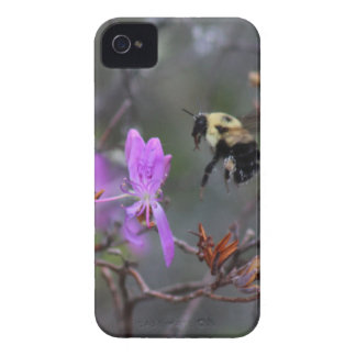 Bee and Wildflower iPhone 4 Case-Mate Case