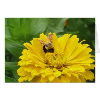 Bee and Zinnia Card