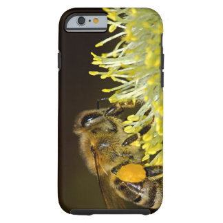 Bee at Work Tough iPhone 6 Case