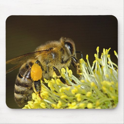 Bee at Work Mouse Pad