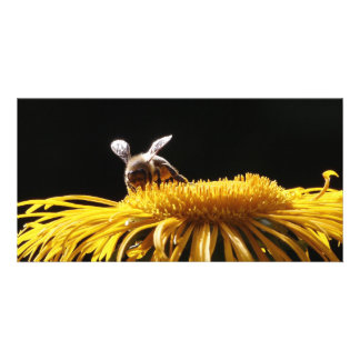 Bee at work photo card template