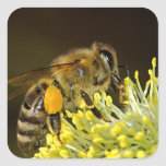 Bee at Work Square Sticker
