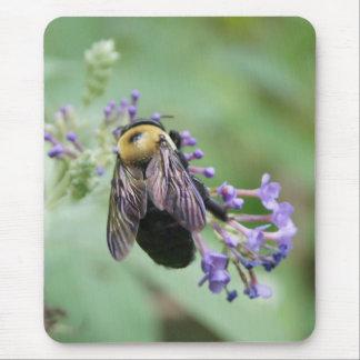 Bee-autiful Bee Mouse Pad