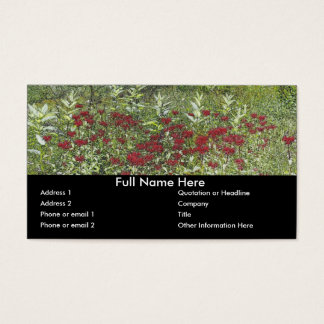 Bee Balm and Milkweed 1 Bookmark Business Card