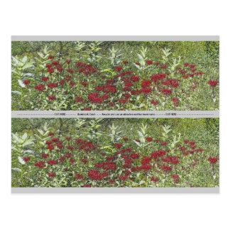 Bee Balm and Milkweed 1 Bookmark Postcard