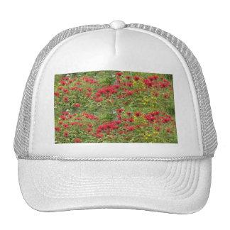 Bee Balm and Milkweed 2 Bookmark Hat