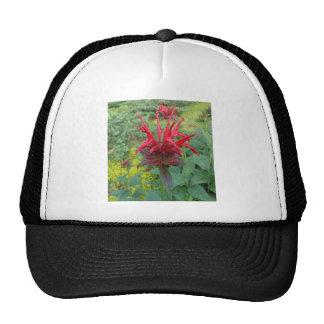 Bee Balm Trucker Hat
