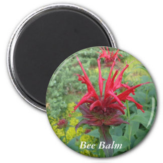 Bee Balm Magnet