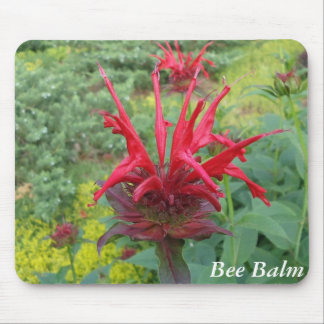 Bee Balm Mouse Pad