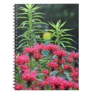 Bee Balm Notebook