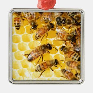 Bee Bees Hive Honey Comb Sweet Dessert Yellow Christmas Tree Ornaments