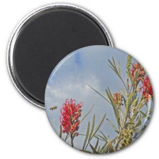 bee & bloom magnet