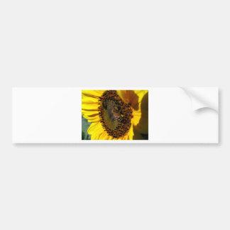Bee Buffet Bumper Sticker