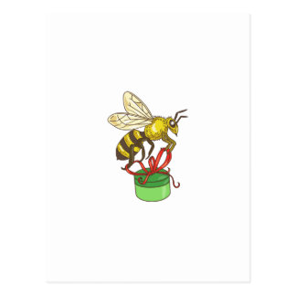 Bee Carrying Gift Box Drawing Postcard