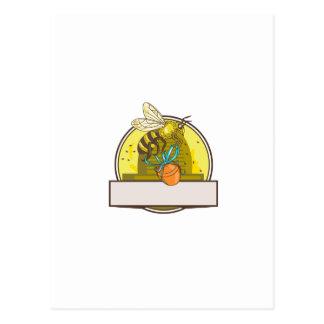 Bee Carrying Honey Pot Skep Circle Drawing Postcard