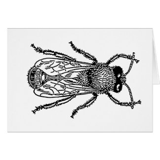 bee-clip-art-3 card