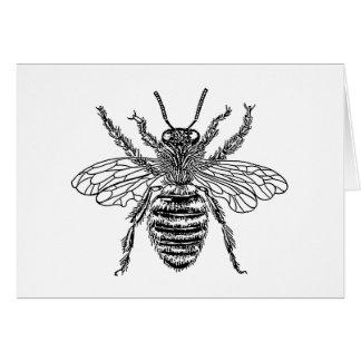 bee-clip-art-4 card