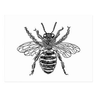bee-clip-art-4 postcard