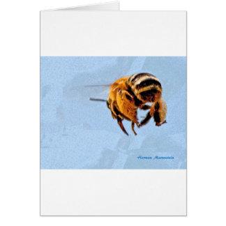 bee d card