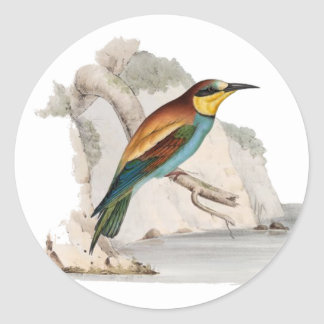 Bee Eater Stickers