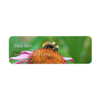 Bee Echinacea Label