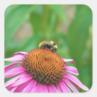Bee Echinacea Sticker