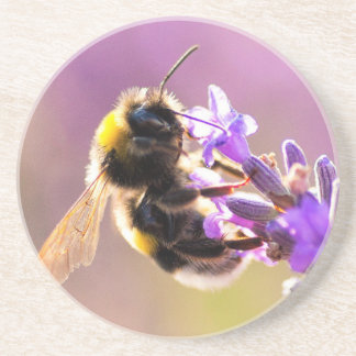 Bee Flower Beautiful Nature Scenery Drink Coaster