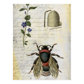 Bee Flower Hive Post Card