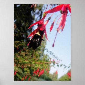 Bee Flower Print