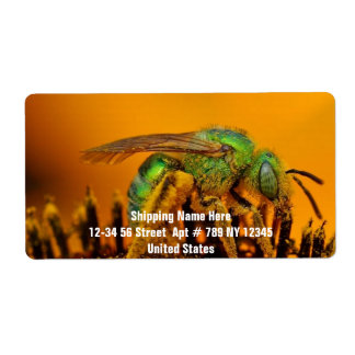 Bee Getting Sweet 1 Shipping Label