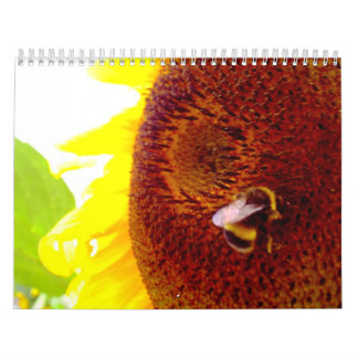 Bee Happy 2009 calendar