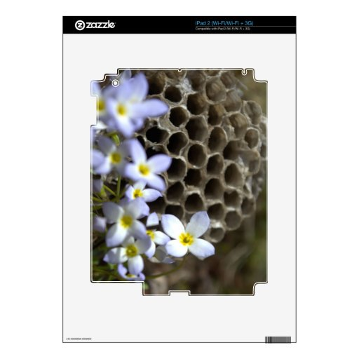 Bee Hive Comb and Flowers Decals For The iPad 2