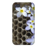 Bee Hive Comb and Flowers iPhone 4/4S Cases