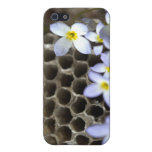 Bee Hive Comb and Flowers iPhone 5 Cases