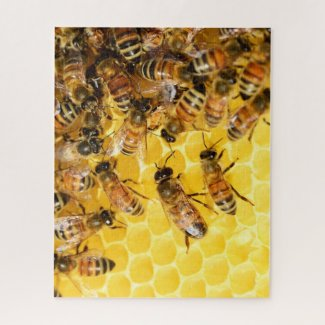 Bee Hive Honey Bees Photo Puzzle