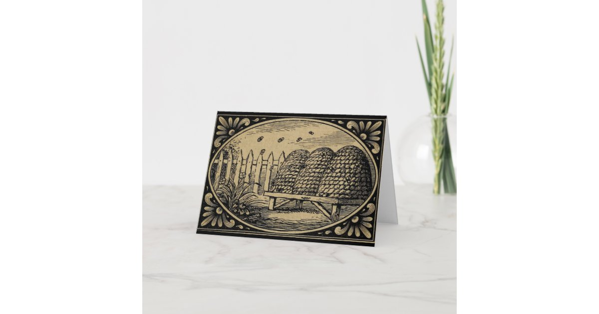 Bee Hives Vintage Drawing Blank Greetings Card Zazzle Com