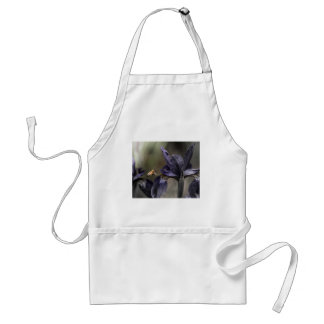 Bee hovering over Iris Aprons