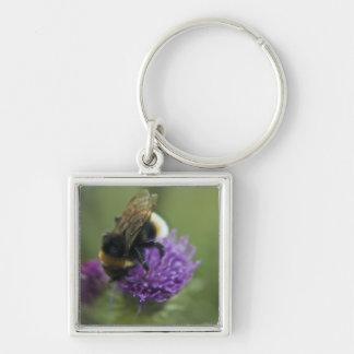 Bee II Keychain