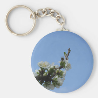Bee impollinates flowers of plum tree keychain