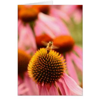 Bee in Flight Card