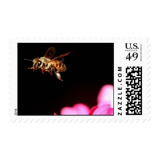 Bee in Flight Postage Stamp