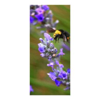 Bee in Lavender Rack Card