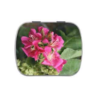 bee in pink multiple flowers candy tin